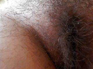 maduro peludo