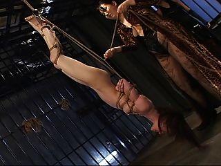 flogging de cabeça para baixo de um japonês ol