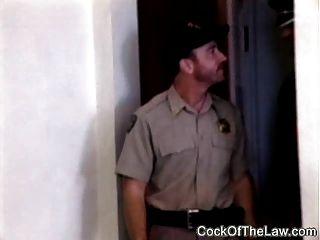 urso de couro duro foda o policial