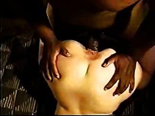 bichano esticado