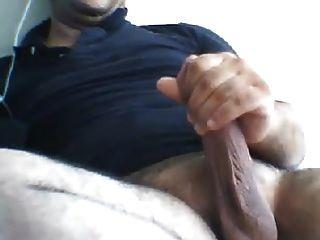 masturbando peru turco urso han cums