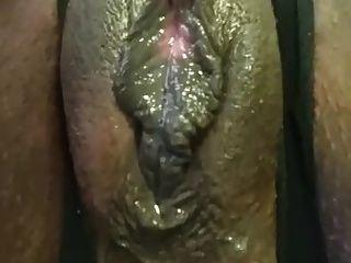 bicho de bbw cremoso húmido phat