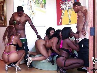 Adolescentes ebony sexy desfrutando bbc