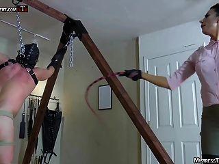 feminismo chicoteando tortura de galo e pisoteando por amante